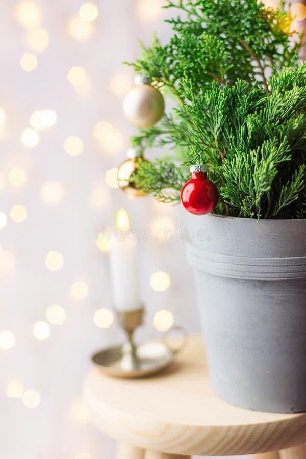 Новый Год рождества предпосылки красивейшее Украшенное в горшке дерево можжевельника украшенное со светами гирлянды красных шарик стоковые изображения rf