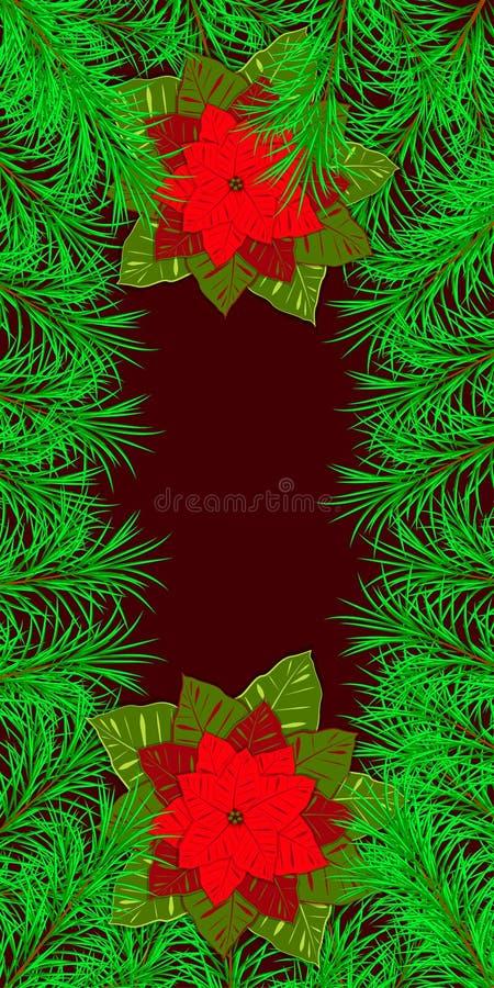 Новый Год, рождество, зимние отдыхи Знамя, приглашение, летчик Рамка сделанная ветвей ели и падуба poinsettia иллюстрация штока