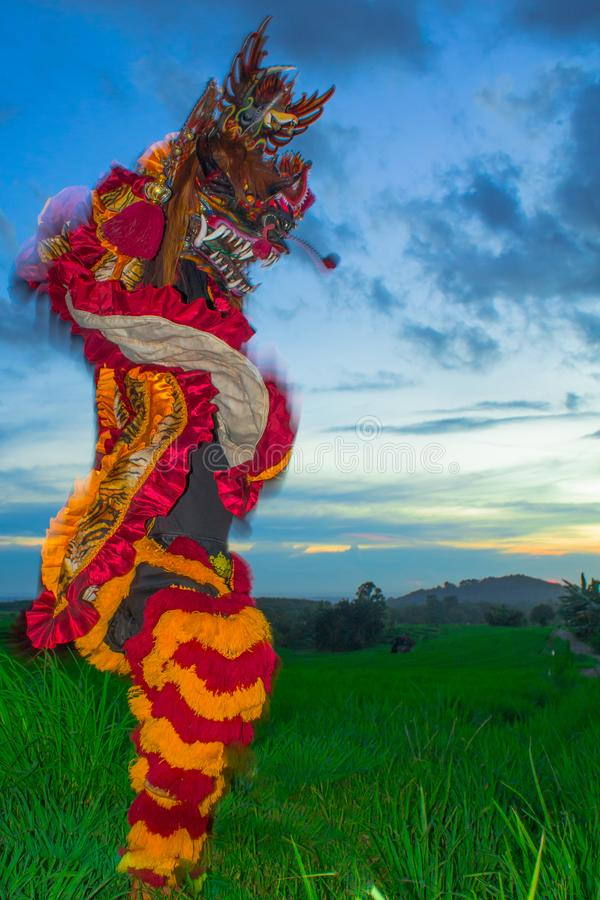 Новый Год 2019 танца льва китайский стоковое изображение