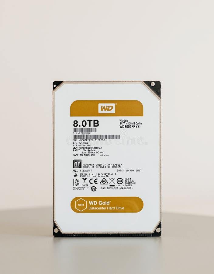 Новый жесткий диск золота 8TB Datacenter Western Digital стоковое изображение rf