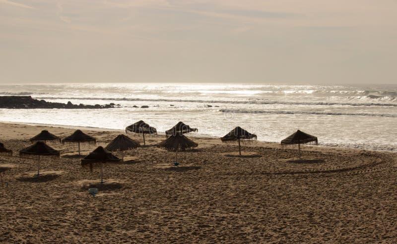 Новый пляж стоковая фотография rf