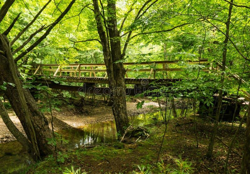 Новый Footbridge Hiker вдоль аппалачского следа стоковое фото rf