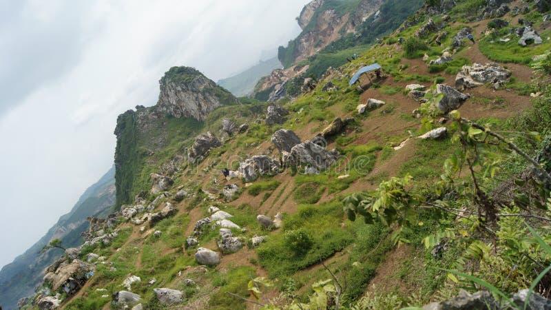 Нога гор и зеленых холмов стоковая фотография rf