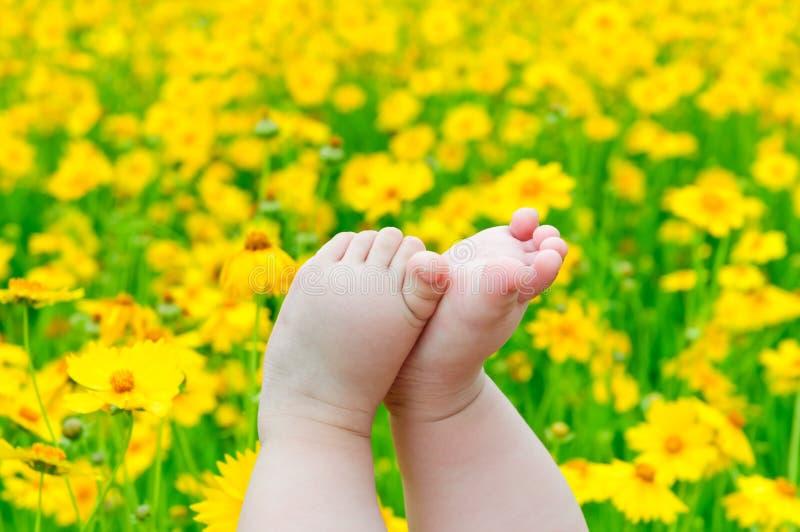 нога младенца симпатичная стоковые изображения