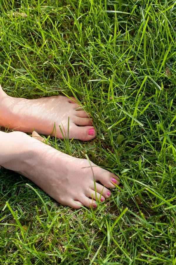 Нога над зеленой травой стоковая фотография rf