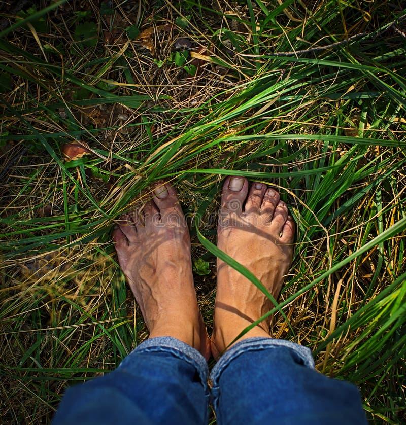 Нога над зеленой травой стоковая фотография