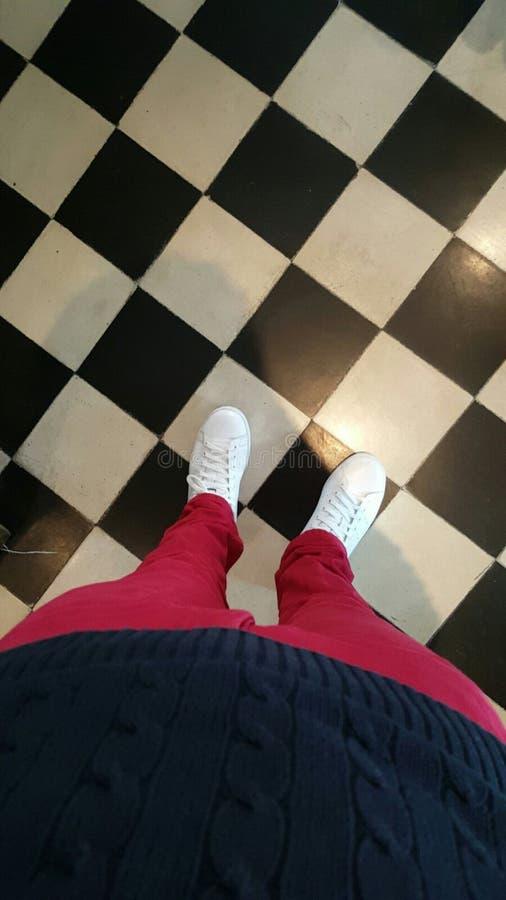 Ноги взгляда стоковое изображение