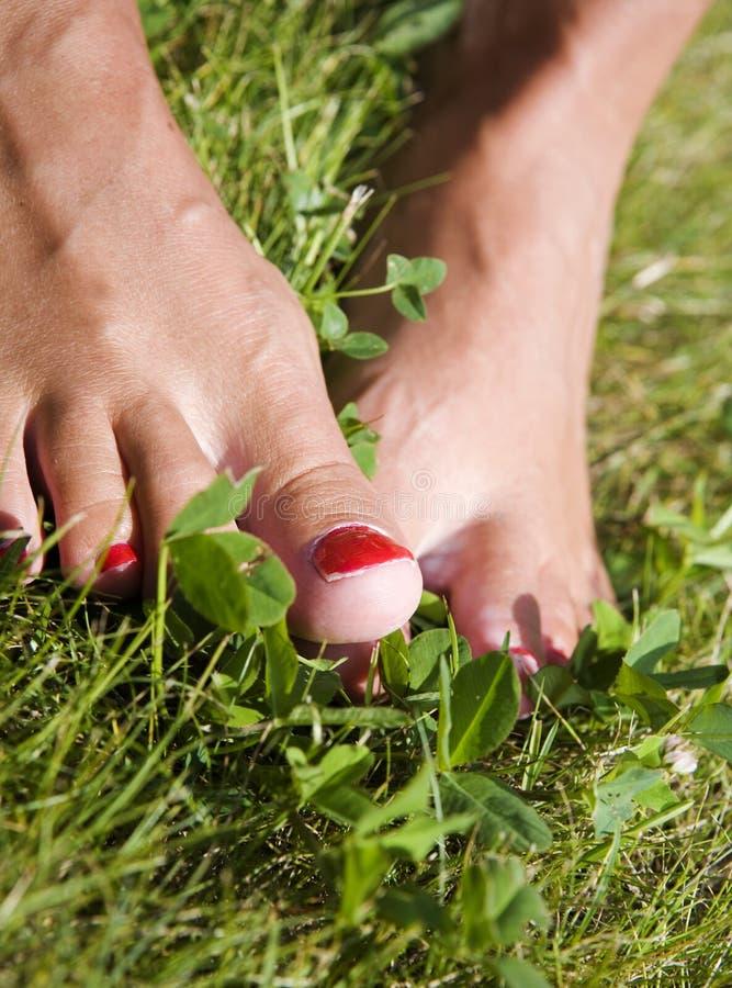 Ноги в траве стоковые фото