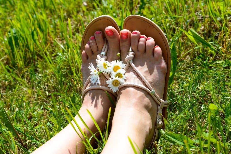 Ноги женщины на траве стоковая фотография rf