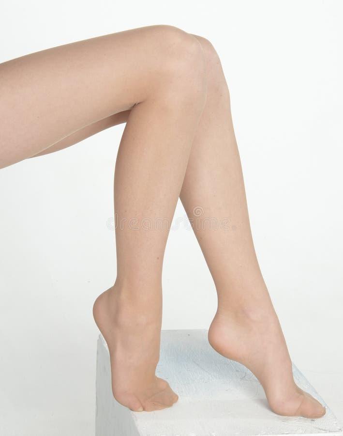 ноги женщины ног s стоковая фотография
