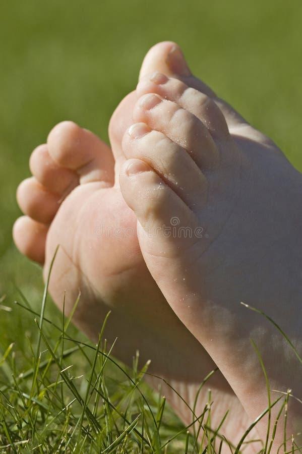 ноги засевают ослаблять травой стоковые фотографии rf