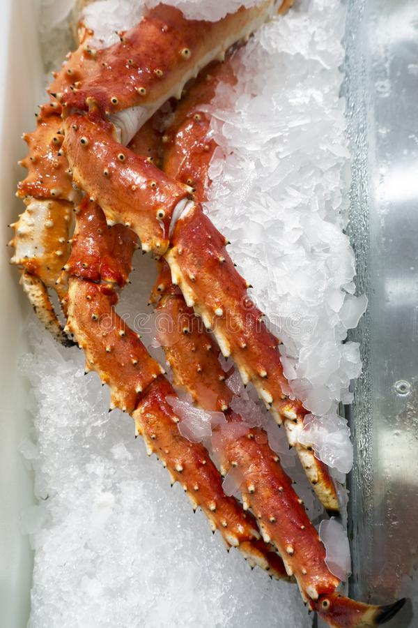 Ноги камчатского краба на задавленном льде стоковые фотографии rf