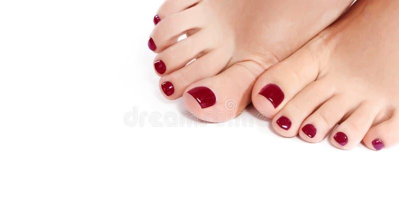 Ноги конца-вверх красивые женские с красным Pedicure Чистая мягкая кожа, здоровые ногти с блеском геля Скопируйте космос на белиз стоковое фото rf