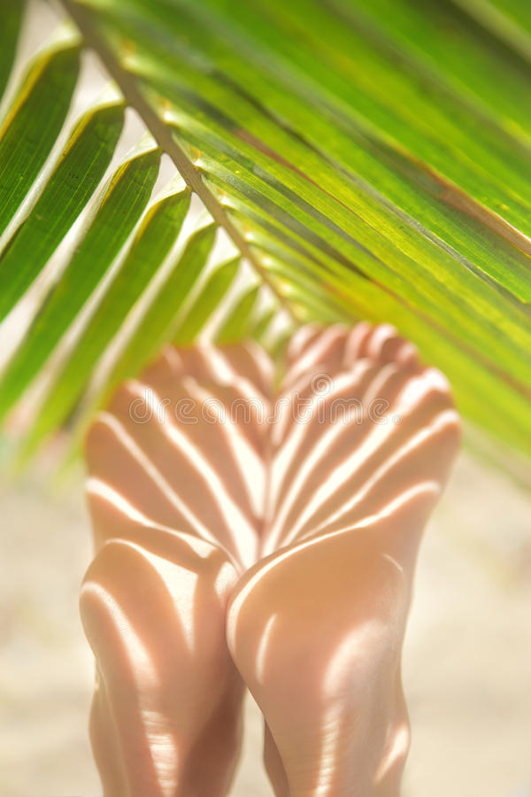 Ноги красивой тонкие женщины стоковая фотография rf