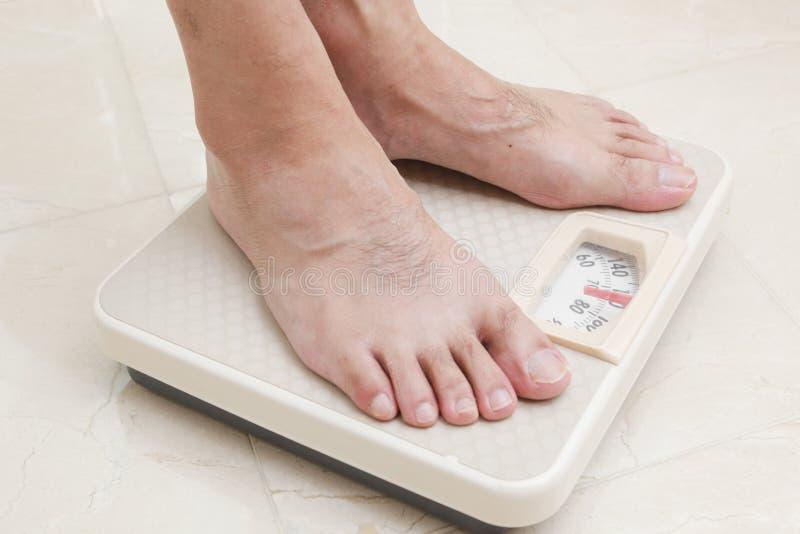 ноги маштаба стоковые изображения rf