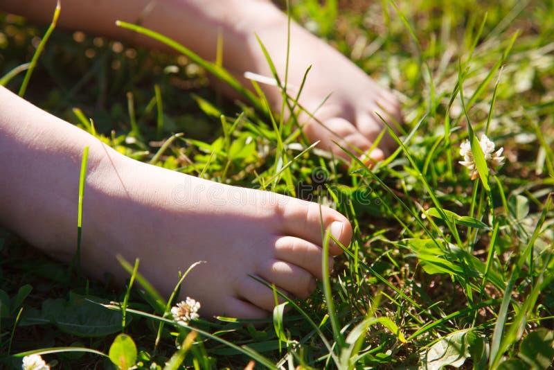 Ноги младенца в траве стоковые фото