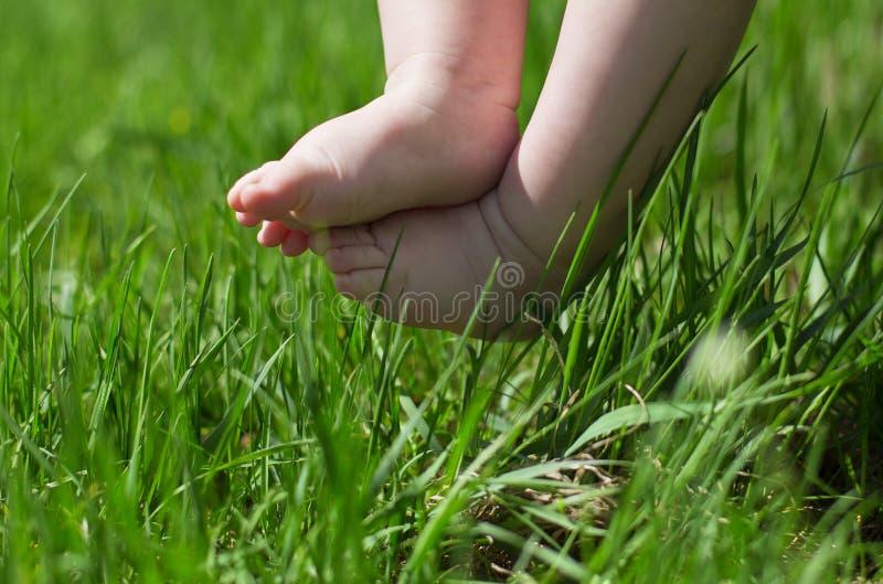Ноги младенца в траве стоковое фото rf