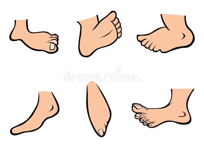 ноги собрания иллюстрация штока