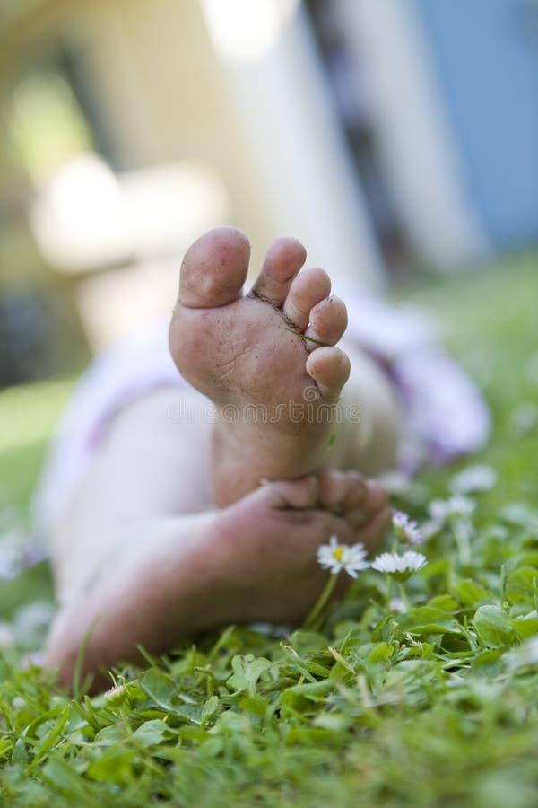 ноги травы стоковая фотография