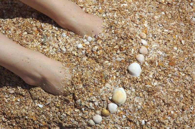 Ноги Бесплатные Стоковые Фото