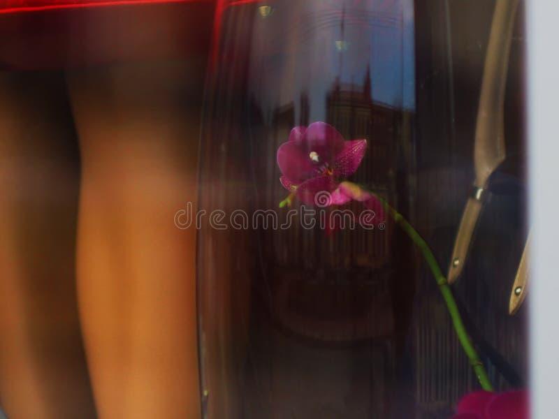 Ноги manikin отражение города и цветка стоковые изображения rf