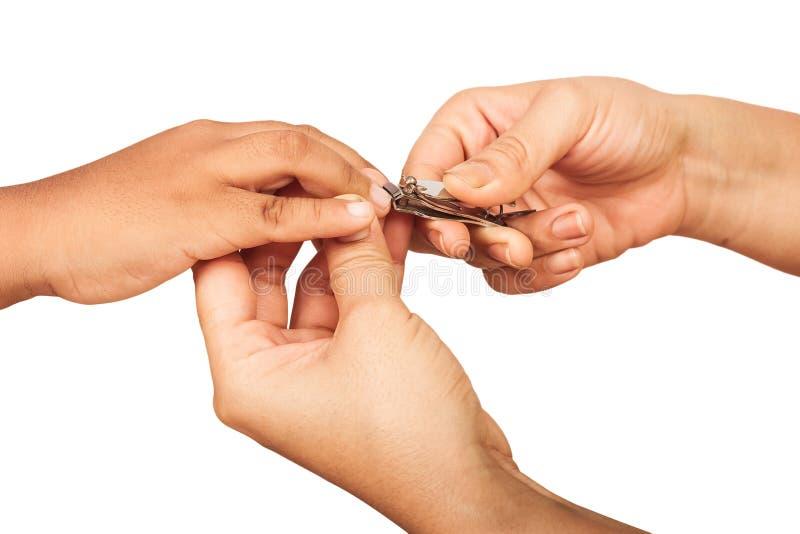 Ногти вырезывания матери стоковое фото