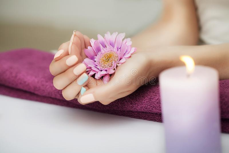 Ногти в курорте Хорошо выхоленные ногти Красивая девушка держит цветок в ее руках В салоне красоты обработки спы близкого изображ стоковое фото rf