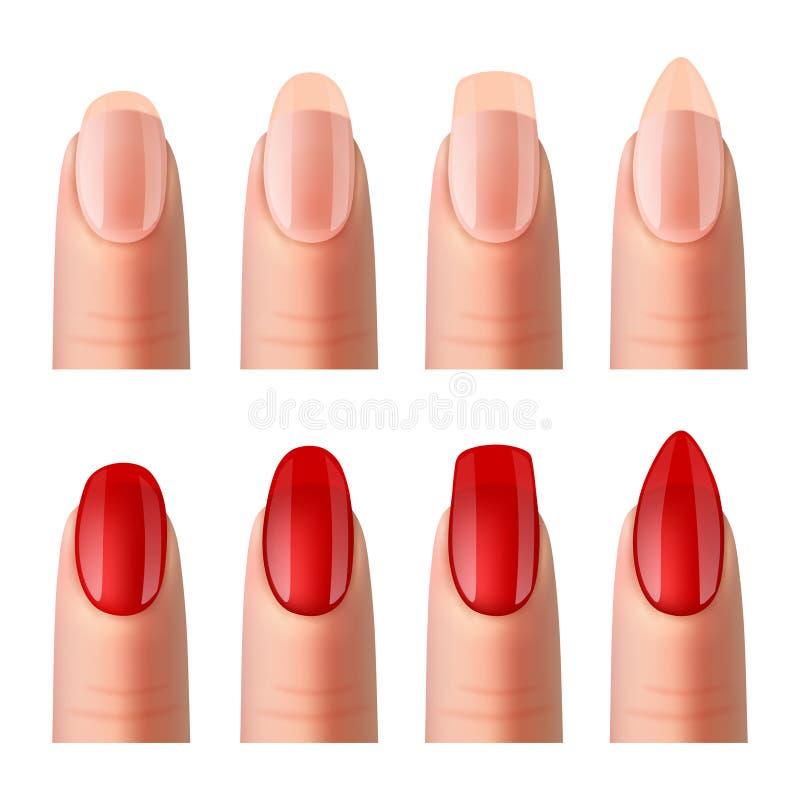 Ногти женщин делать реалистический комплект изображений иллюстрация вектора