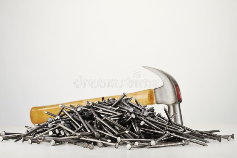 Ногти на белой предпосылке стоковая фотография rf