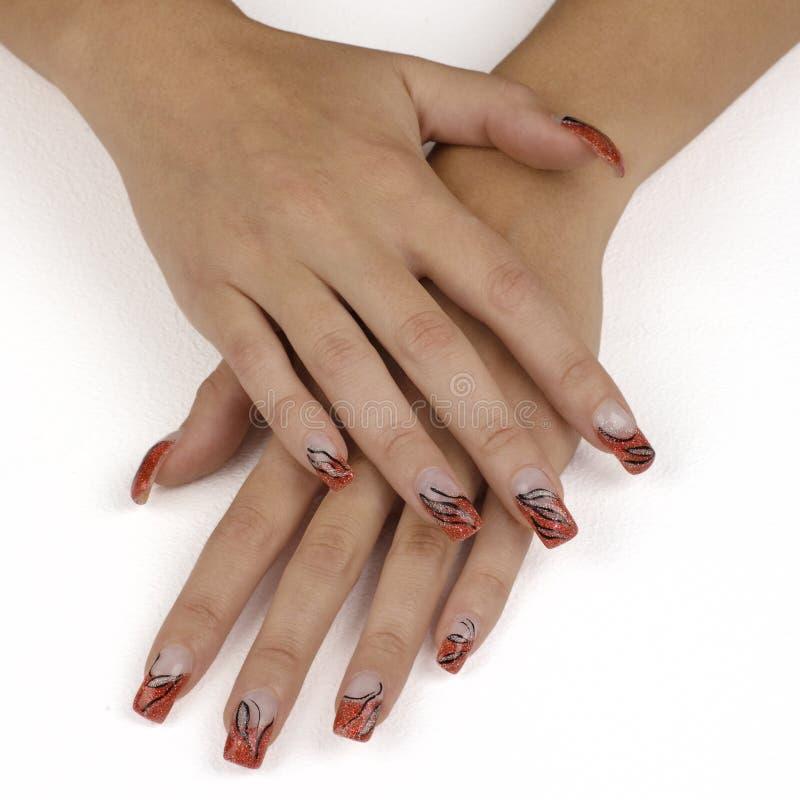 ногти стоковые изображения