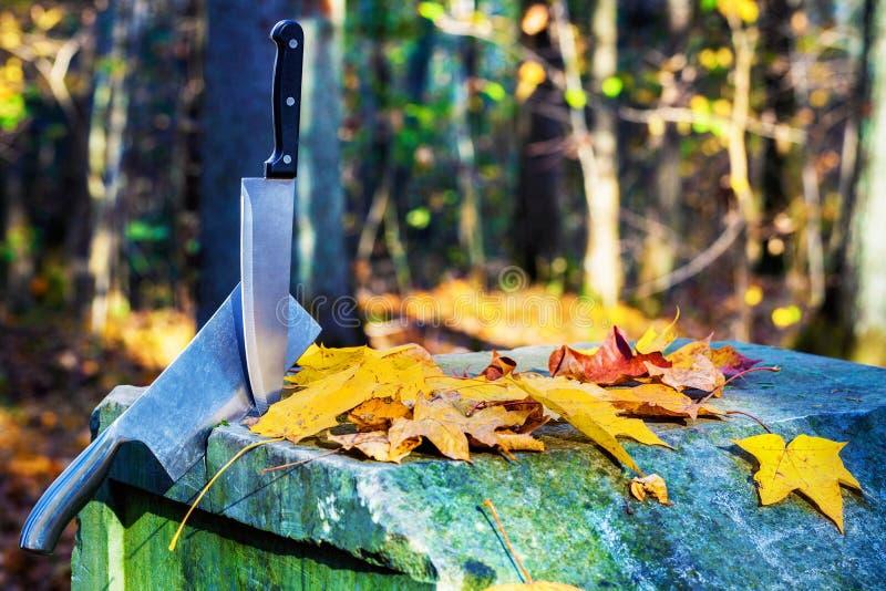 2 ножа аранжированного в каменном алтаре стоковые фото