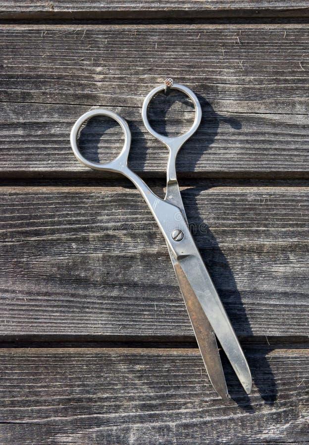 Ножницы затрапезного металла ржавые вися на деревянной доске огораживают крупный план стоковое изображение