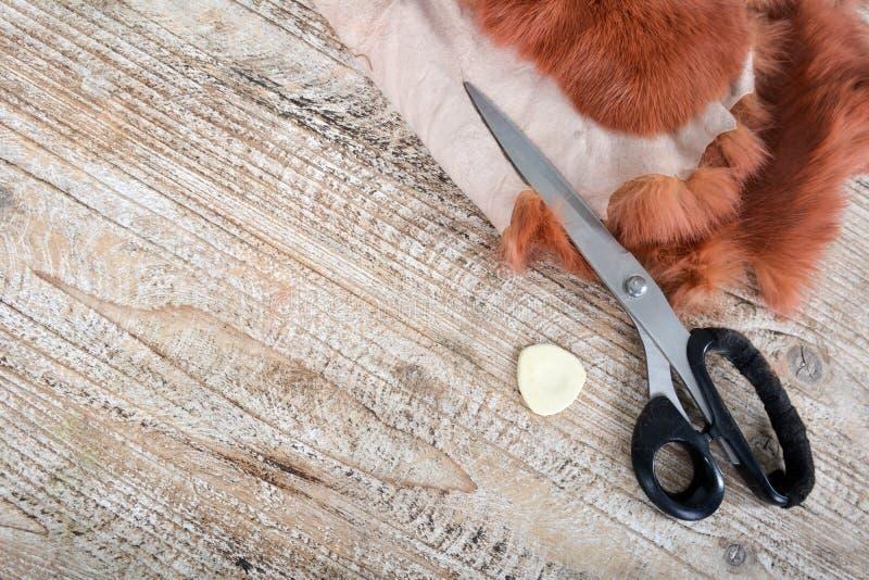 Ножницы и часть меха на деревянном столе, работе скорняка стоковые фотографии rf