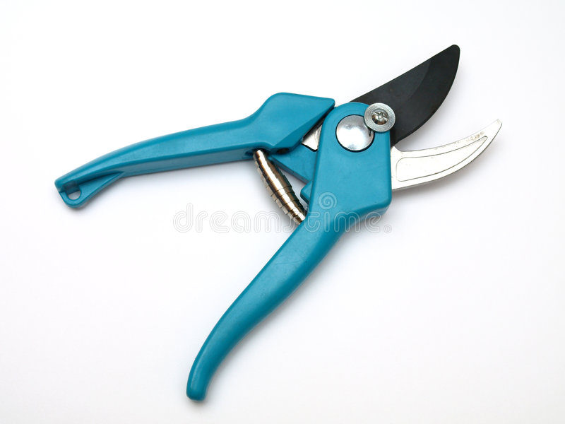 ножницы сада стоковая фотография rf