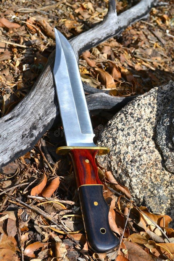Нож Bowie стоковое изображение rf