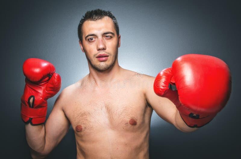 Нокдаун - смешной боксер стоковое фото rf