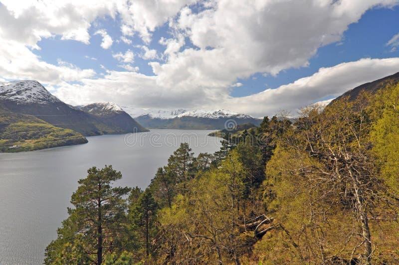 Норвегия голубое небо норвежца природы гор fiords стоковые изображения rf