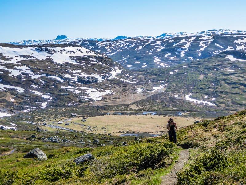 Норвегия - девушка с пешим рюкзаком на trhough следа плато гористой местности стоковые изображения rf