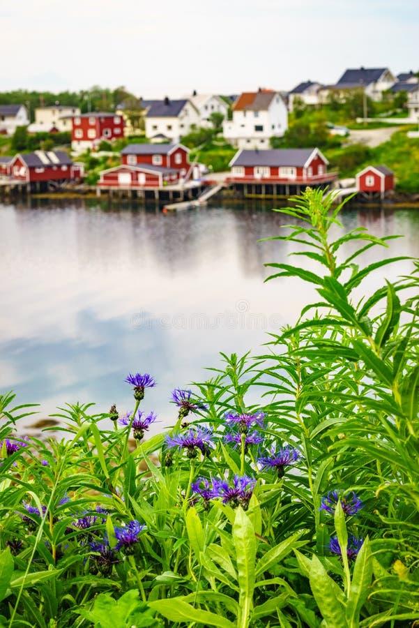 Норвежский рыбацкий поселок, Reine Lofoten Норвегия стоковые фотографии rf