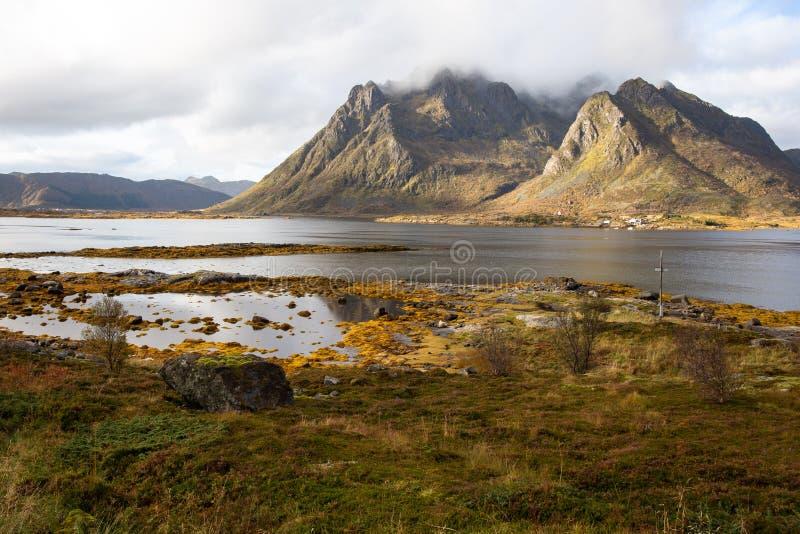 Норвежский фьорд, острова Lofoten, Норвегия стоковое изображение