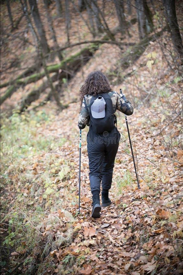 Нордический гулять Портрет счастливой женщины с вьющиеся волосы в лесе осени радостном и молодой женщине улыбок имея потеху внутр стоковая фотография rf
