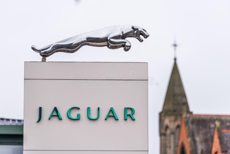 Нортгемптон Великобритания 11-ое января 2018: Стойка знака логотипа ягуара в центре Northampton Town стоковое изображение rf