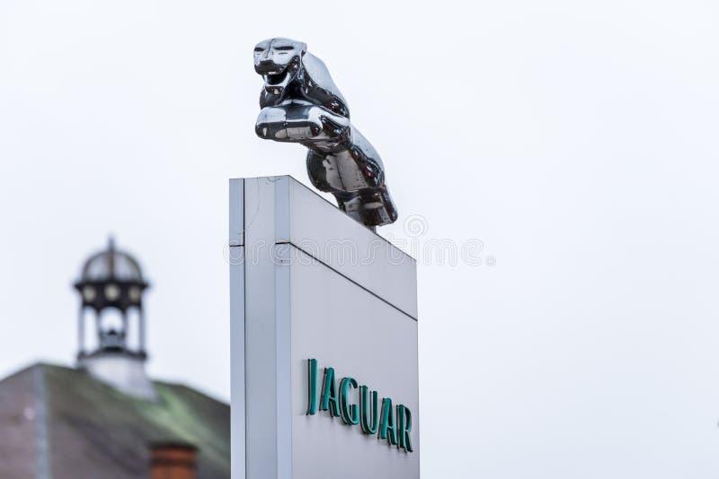 Нортгемптон Великобритания 11-ое января 2018: Стойка знака логотипа ягуара в центре Northampton Town стоковые фотографии rf