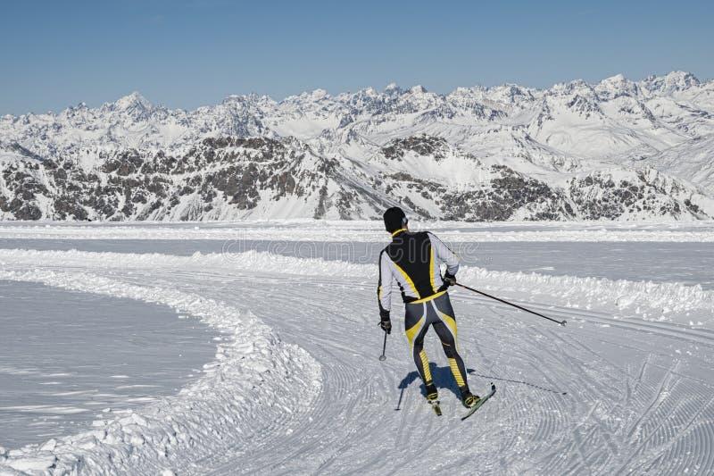 Нордическая лыжа стоковые изображения