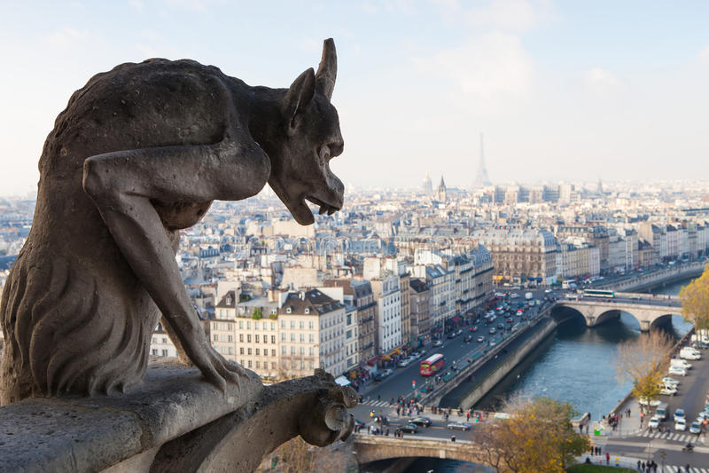 Нотр-Дам Парижа стоковое изображение rf