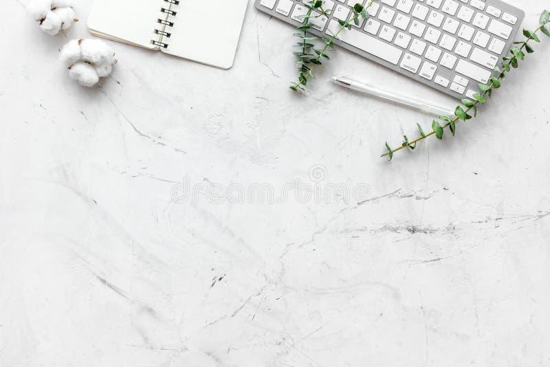 Ноутбук, ветвь хлопка, тетрадь на космосе экземпляра белой предпосылки плоском положенном Фрилансер, место для работы домашнего о стоковая фотография