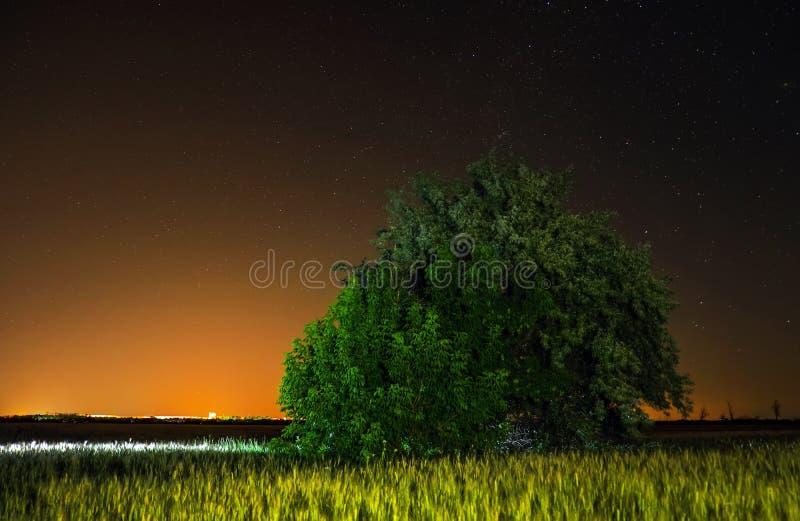 Ноча в сельской местности стоковые изображения