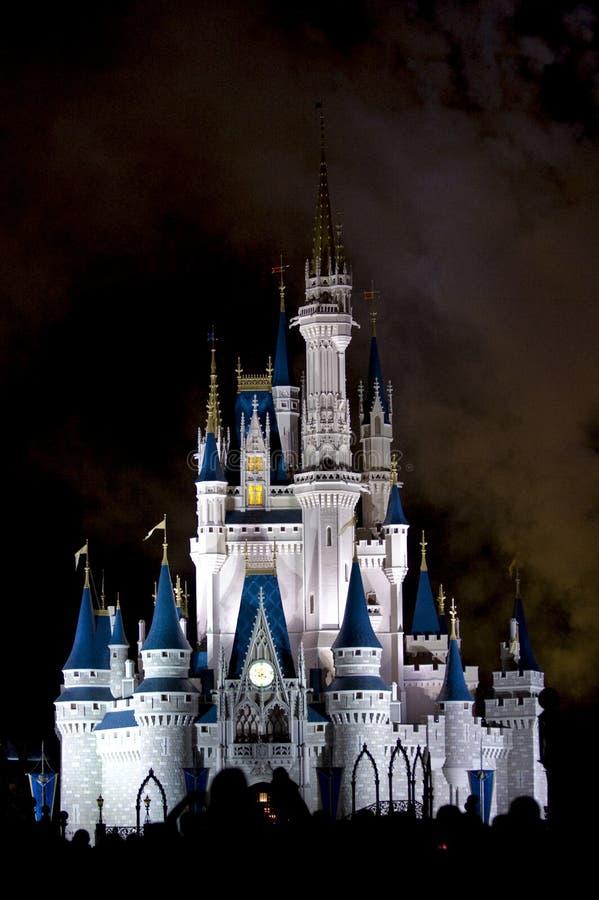 ноча Дисней толпы замока стоковые фотографии rf