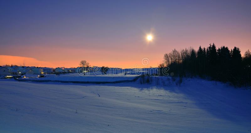 Ноча зимы с луной стоковые фотографии rf