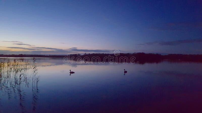 Ноча озером стоковые изображения